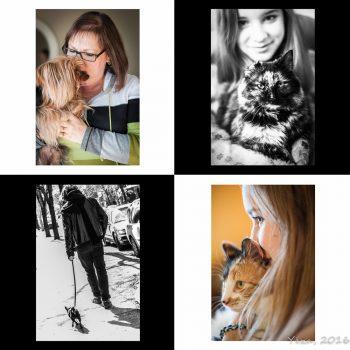 promo_animaux-1